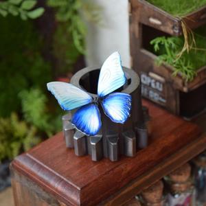 蝶のマグネット メネラウスモルフォ Glacier 2Ssize