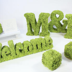 [モスオブジェ]Welcomeオブジェ+モスキューブ セット