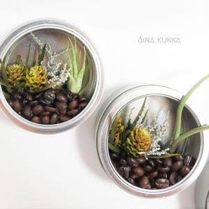 【珈琲豆のテラリウム】エアプランツ+プリザーブドフラワー/マグネット付き