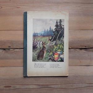 antiques  うさぎのイースタ-本
