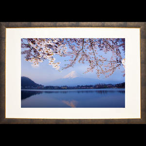 桜富士逆景(Lサイズ)