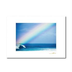 """""""Rainbow Surf""""マットプリント"""