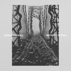 LEON VYNEHALL/Nothing Is Still -輸入限定盤LPBOX [DL/短編小説&ポスター封入]