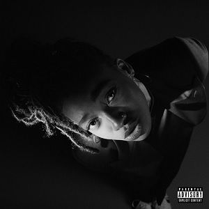 3月上旬入荷予定 - LITTLE SIMZ / GREY AREA (WHITE VINYL) [LP]