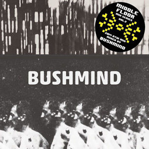 近日入荷 - BUSHMIND / 2014 DTW MIX [MIX CDR]