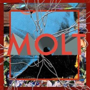10/24 - MOLT / MOLT [CD]
