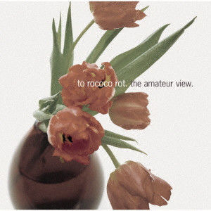 TO ROCOCO ROT / THE AMATEUR VIEW [CD]