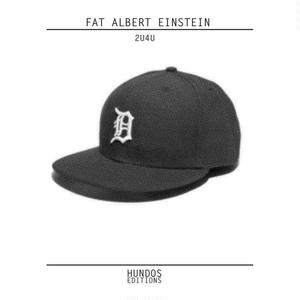FAT ALBERT EINSTEIN / 2U4U [LP]