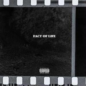 BCDMG / Fact Of Life [CD]