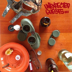 MF DOOM / Unexpected Guests [2LP]