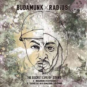 7/25 - BUDAMUNK / RADIUS - THE SECRET LIFE OF SOUND [7INCH]
