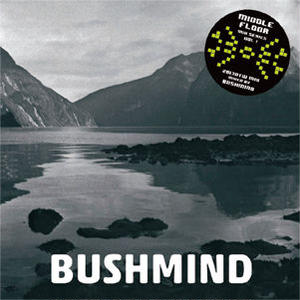 近日入荷 - BUSHMIND / 2013 DTW MIX [MIX CDR]