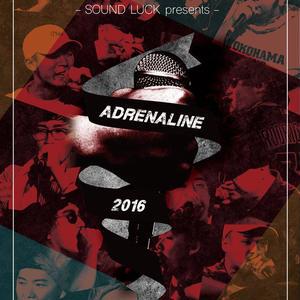 ADRENALINE 2016 / 完全収録 [DVD]