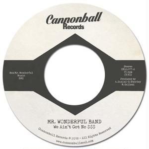 Mr. Wonderful Band / We Ain't Got No $$$ [7INCH]