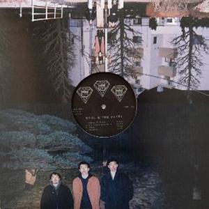 2月下旬 - WOOL & THE PANTS / WOOL IN THE POOL [LP]
