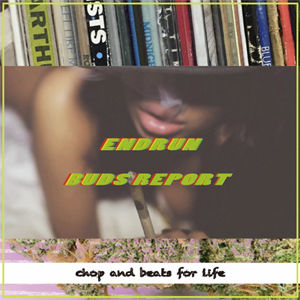 ENDRUN/BUDS REPORT [CD]