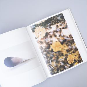 Wolfgang Tillmans Serpentine Gallery / Wolfgang Tillmans(ヴォルフガング・ティルマンス)