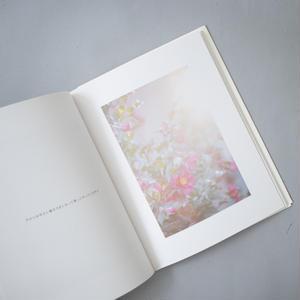 きらきら / 川内倫子(Rinko Kawauchi)