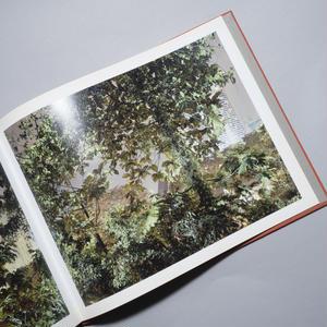 Paradise Now / Peter Bialobrzeski (ピーター・ビアロブルゼスキー)