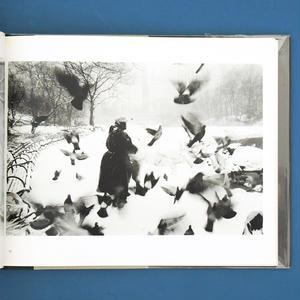 Central Park / Bruce Davidson(ブルース・デヴィッドソン)