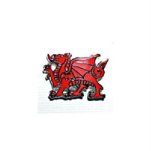 ピンバッジ:ウェールズ レッドドラゴン