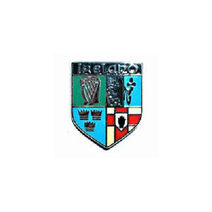 ピンバッジ:アイルランドの紋章
