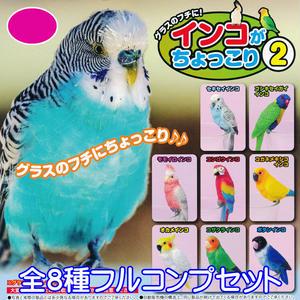 インコがちょっこり2 鳥 フィギュア ガチャ ビーム(全8種フルコンプセット)