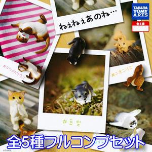 ねえねえあのね・・・ 動物 アニマル フィギュア グッズ タカラトミーアーツ(全5種フルコンプセット)