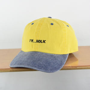 I'M...HOLIC 2TONE COLOR  CAP
