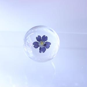 Präparat round  【Verbena blue】