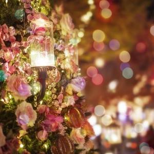 クリスマスはまだまだ終わらない!「使うと会話のリズムが崩れる世界のことわざ その8」mp3