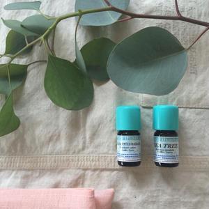 Eucalyptus Radiata organic