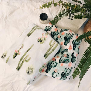 Cactus Blanket