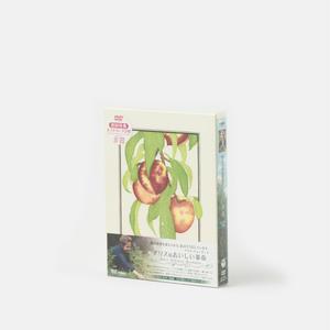 DVDボックス/アリスのおいしい革命