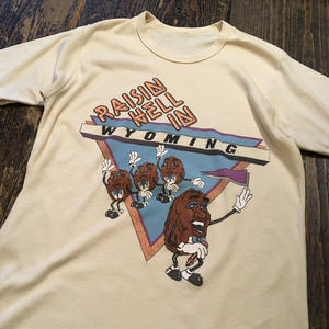 [USED] CALIFORNIA RAISIN Tee