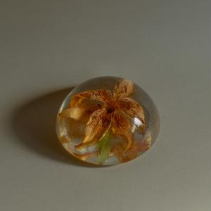 Vintage acrylic flower specimen
