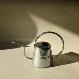Tin Watering Cans