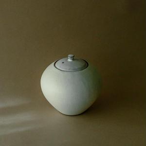 Modern white pot*
