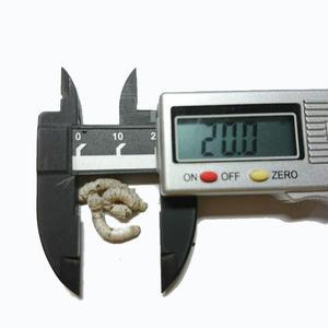 活き餌:シルクワームS(お試し30匹)