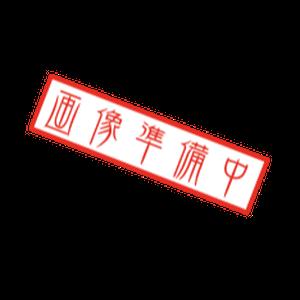四つ編みレザーリード(ホワイト×ゴールド)