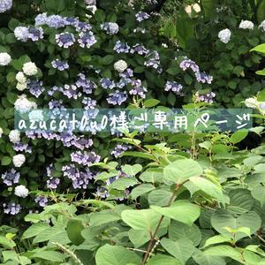 azucat0u0様ご専用ページ