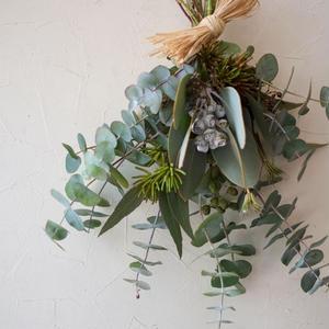 Eucalyptus swag