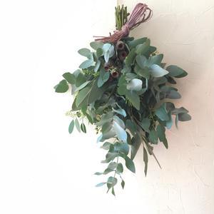 Eucalyptus swag 2