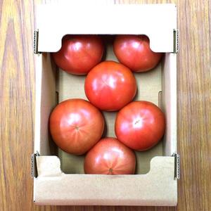 【送料無料】トマト 1kg