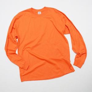 NEW anvil L/s Tshirt L