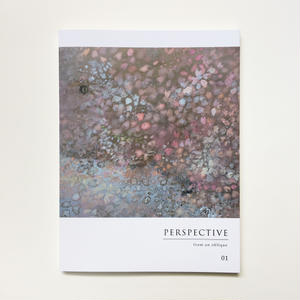 PERSPECTIVE -from an oblique-