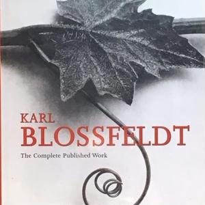 KARL BLOSSFELDT the complete work