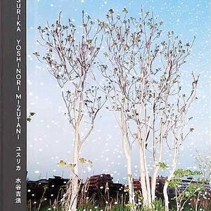 YUSURIKA / YOSHINORI MIZUTANI (水谷吉法)