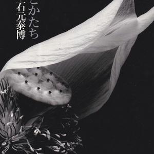 色とかたち / 石元泰博