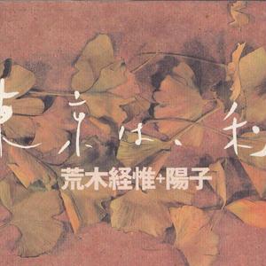 東京は、秋 / 荒木経惟+陽子